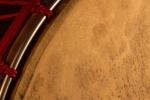 les Tambourguignons peau rasée